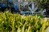 Herbalife Under New Scrutiny Weeks After Dodging FTC