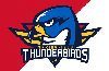 Springfield Thunderbirds, Mass Lottery Wrap Up 'Feed the Frontline' Campaign