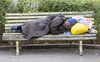 The robo-lawyer that appealed $4M in parking tickets is now helping the homeless