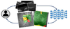 Modular deep neural networks for automatic quality control of retinal optical coherence tomography scans