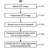 System and method for classifying and quantifying age-related macular degeneration