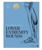 Blood Vessel Density Measured Using Dynamic Optical Coherence Tomography is a Tool for Wound Healers