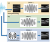 High signal-to-noise ratio reconstruction of low bit-depth optical coherence tomography using deep learning