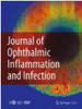 Optical coherence tomography angiography (OCTA) as a new diagnostic tool in uveitis