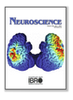 Optical Coherence Tomography for Neurovascular Disorders