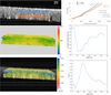 Live human assessment of depth-dependent corneal displacements with swept-source optical coherence elastography