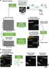 Neural network-based image reconstruction in swept-source optical coherence tomography using undersampled spectral data
