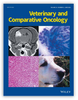 Intraoperative assessment of canine soft tissue sarcoma by deep learning enhanced optical coherence tomography