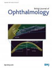 Deep learning-based signal-independent assessment of macular avascular area on 6×6 mm optical coherence tomography angiogram in diabetic retinopathy: a comparison to instrument-embedded software