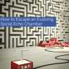 How to Escape an Evolving Social Echo Chamber